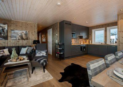 A-bygg stue/kjøkken