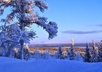 Vinterbilder januar 2010 034